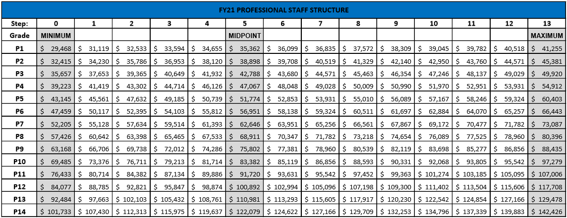 Professional Salary Structure